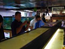 fishhop2012_005