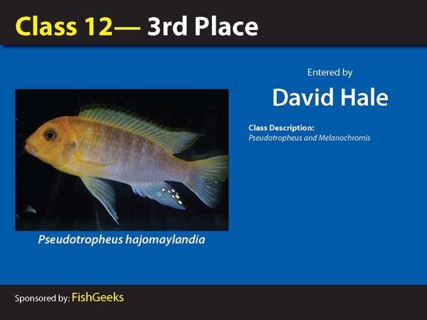 aca2006_winners_052.jpg