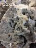 coral lace rock $2.00/lb