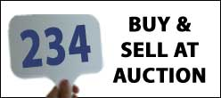 GCCA Auction